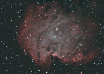 astrophotography gallery Monkey Head Nebula